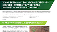 Seed and Soil borne diseases