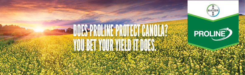 Does Proline Protect Canola? You Bet Your Yield It Does.