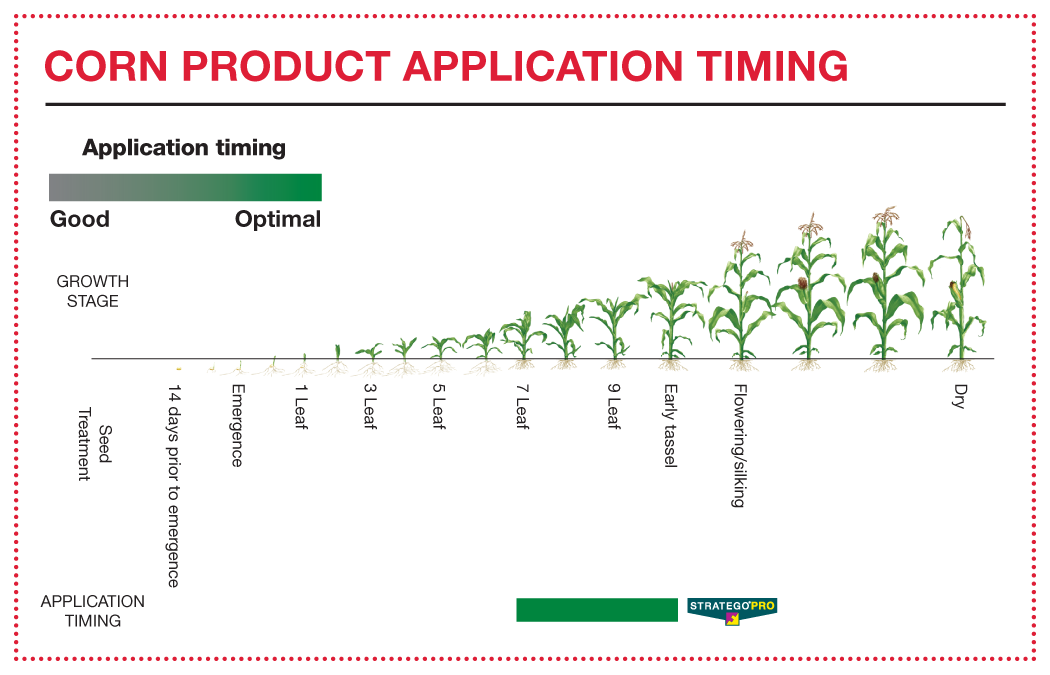 Corn Product Application Timing