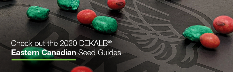 Check out the 2020 DEKALB Easter Canadian Seed Guides