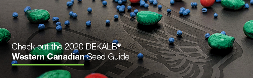 Checkout the 2020 Western Canada Seed Guide | DEKALB