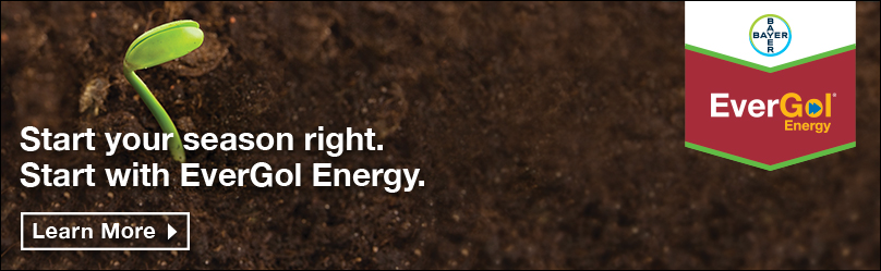 EverGol Energy - Start your season right. Start with EverGol Energy.