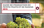 Guide De Production De Petits Fruits Et De Raisins