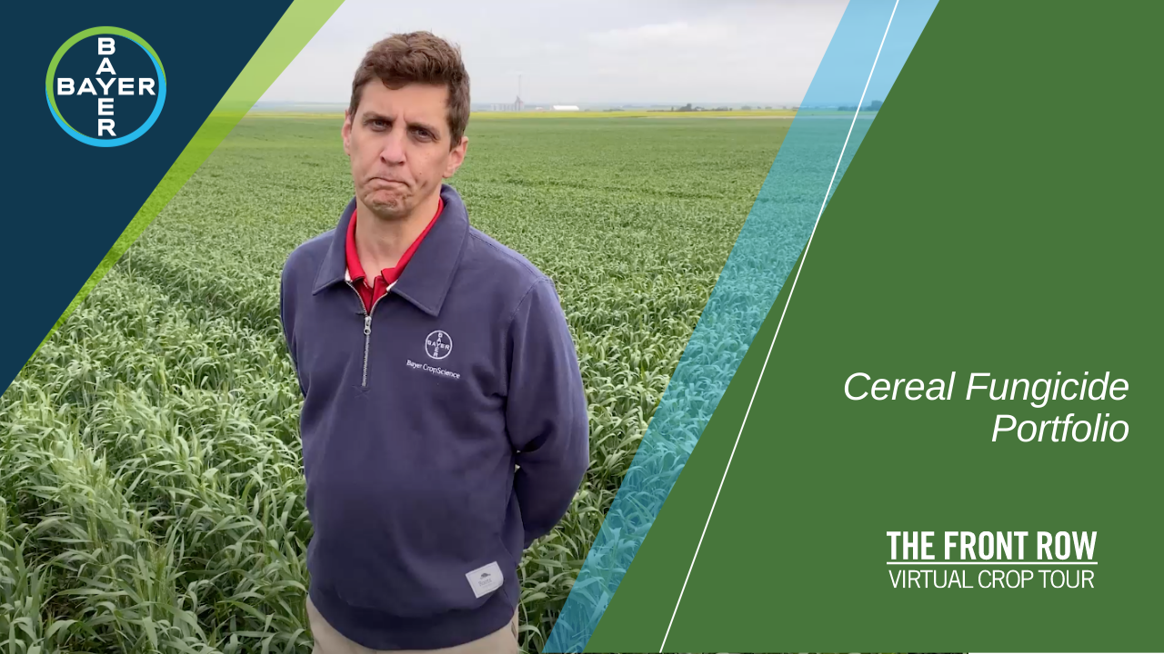 Image of Jon Weinmaster explaining what makes our cereal fungicide portfolio perform to its full potential in your field.