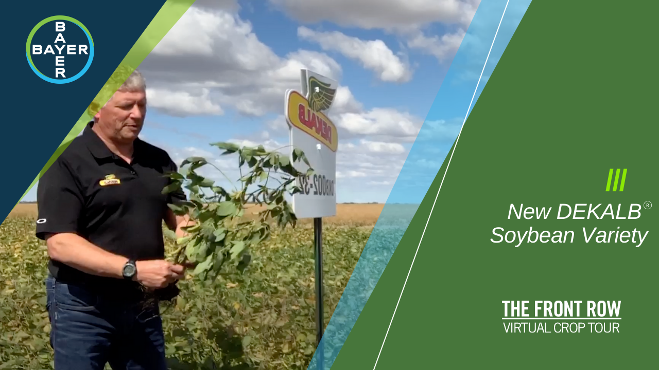 Image of Ron Rabe, Market Development Agronomist, introduces you to DKB002-32, the newest soybean variety from DEKALB® that's packed full of yield potential for your fields.