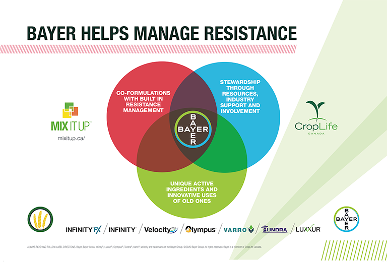 Managing Resistance in Cereals feature image