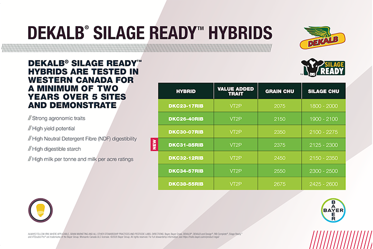 DEKALB Silage Ready Hybrids feature image