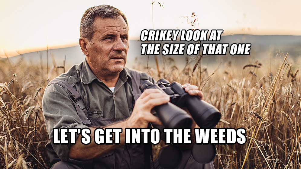 Photo of Bayer Farmer looking into field with caption Let's Get Into the Weeds