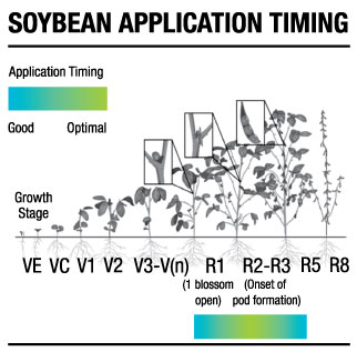 Delaro fungicide spray timing for soybeans