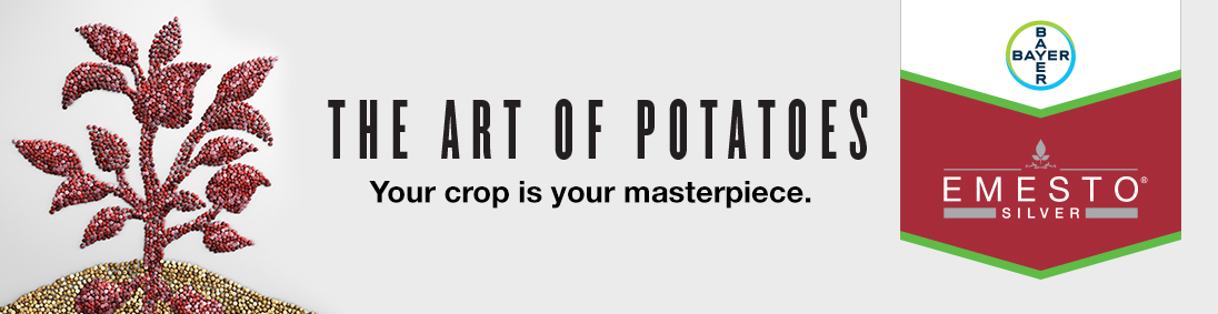 Emesto Silver | The art of potatoes. Your Crop is Your Masterpiece