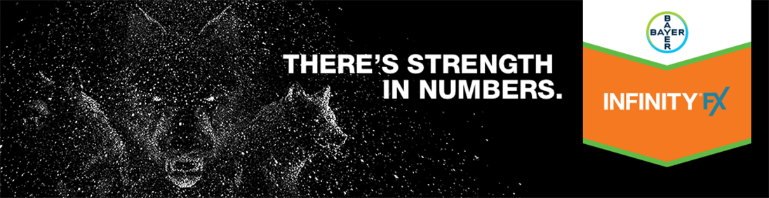 Infinity FX - There's Strength in Numbers