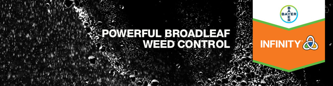 Infinity - Powerful Broadleaf Weed Control