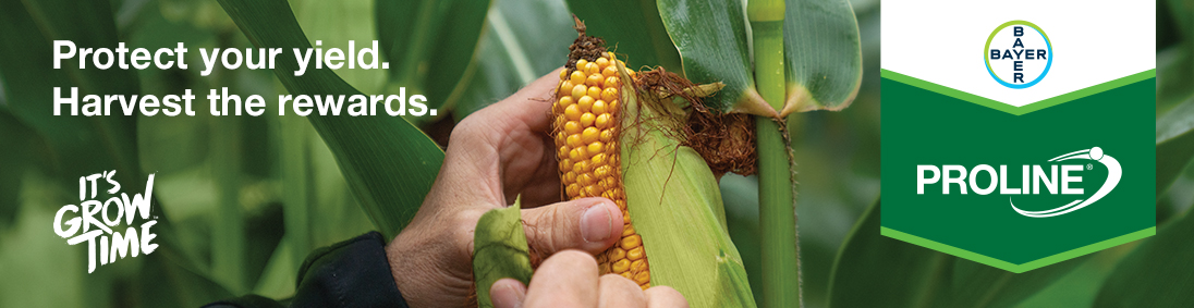 Proline Corn - Protect your yield. Harvest the Rewards.