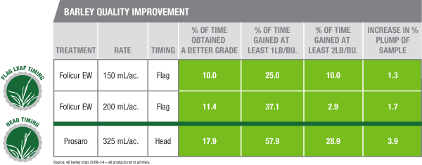 Barley Quality Improvement