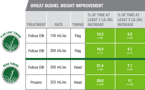 Wheat Bushel Weight Improvement