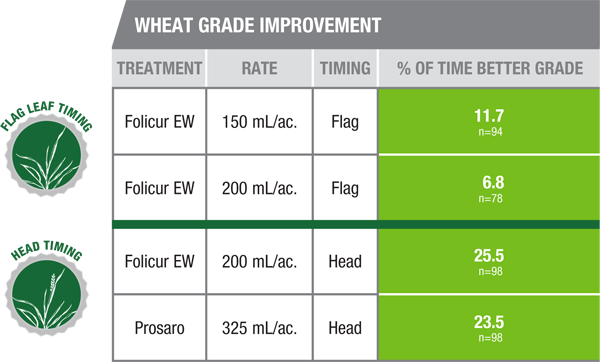 Wheat Grade Improvement