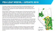 Pea Leaf Weevil protection