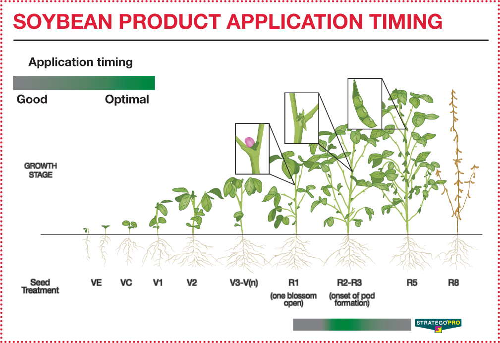 Soybean Product Application Timing