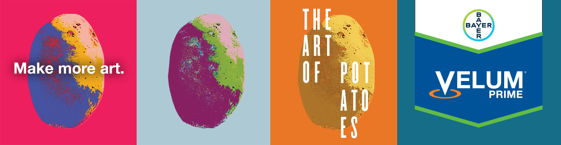 Make More Art. The Art of Potatoes | Velum Prime