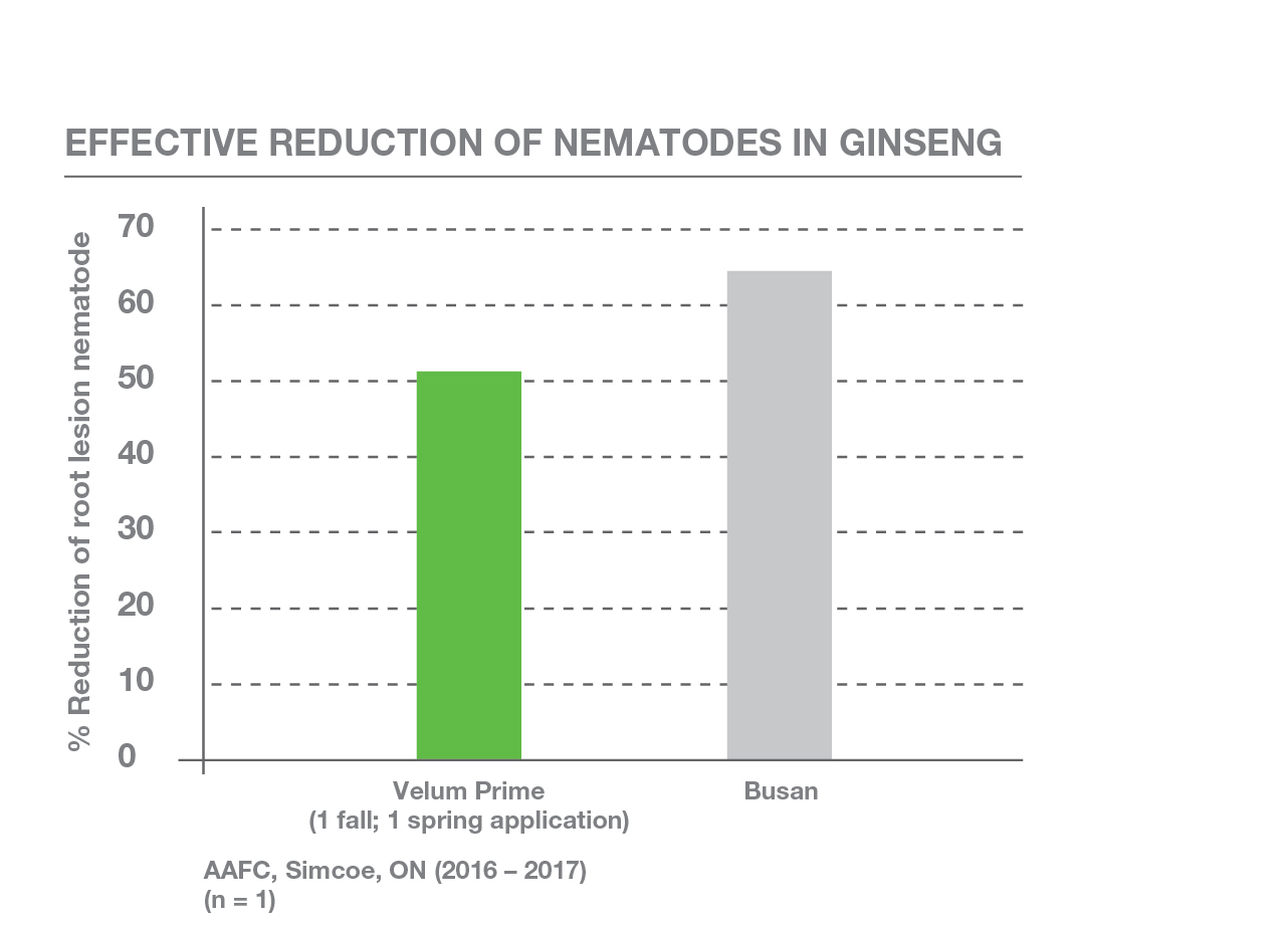 Effective Reduction of Nematodes in Ginseng