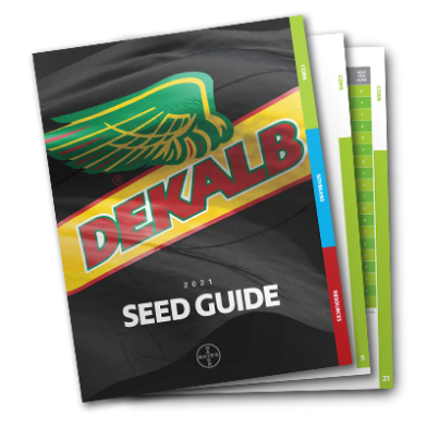 DEKALB Seed guide feature image