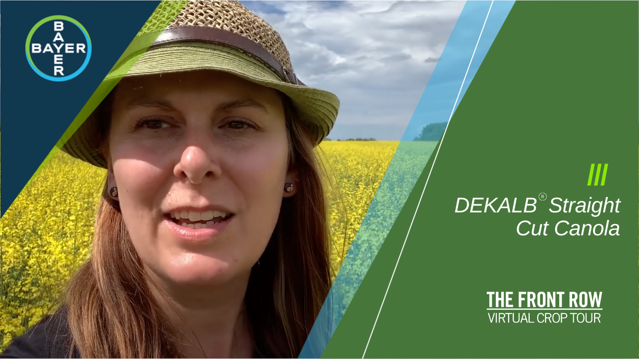 Image of Erin McDougall looking at what it means when you choose DEKALB® SC canola.