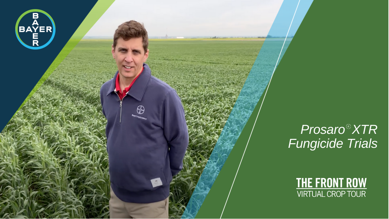 Image of Jon Weinmaster explaining why it's all about the chemistry when fighting fusarium head blight with Prosaro XTR.