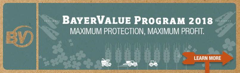 BayerValue Program 2018