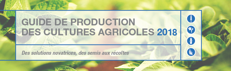 Crop Production Guide East page banner - French