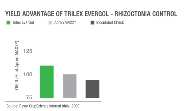 Yield increase of Trilex EverGol vs. Apron MAXX for rhizoctonia control