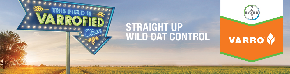 Straight Up Wild Oat Control