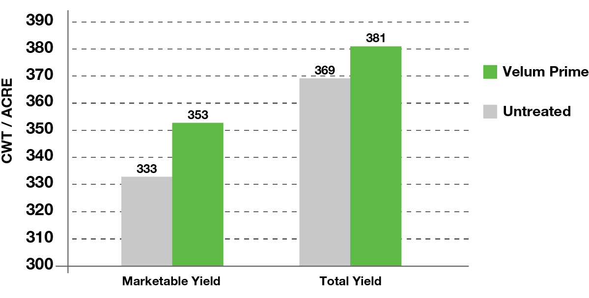 Yield increase using Velum Prime nematicide vs. untreated
